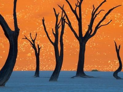15. Deadvlei, Namibia