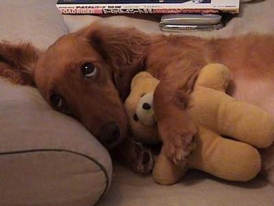 """""""Selamat tiduuur~"""""""