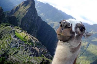 Jalan-jalan dulu! @Machu Picchu