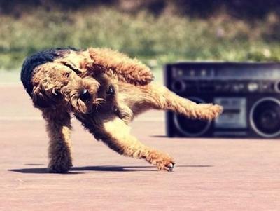 Hey! Dancing with style, yo!