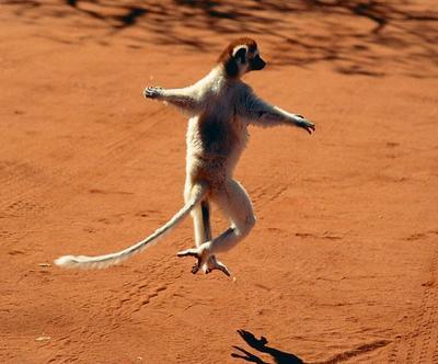 Lompatan ala balerina. Swing!