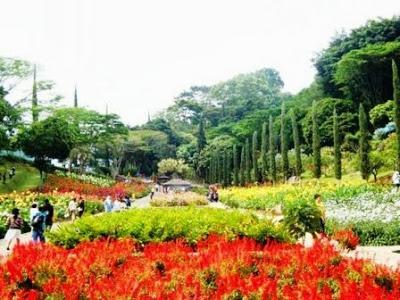 Taman Selecta