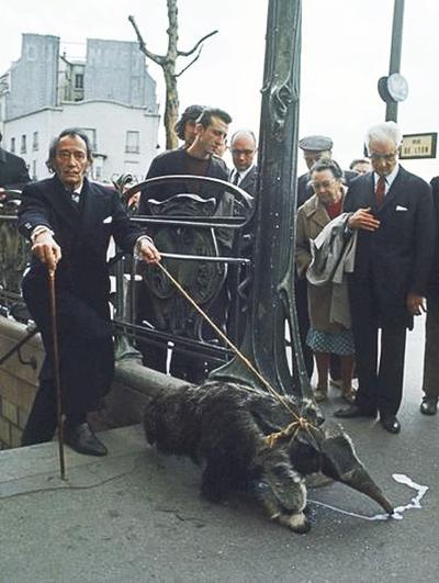 Salvador Dali dan Ant-Eater