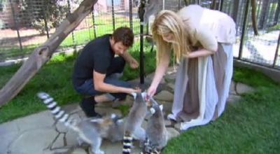 Kirstie Alley dan Lemurnya