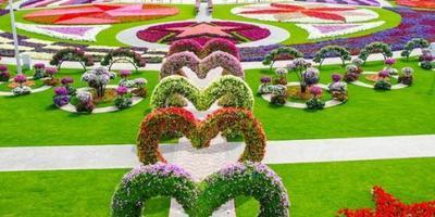 4 Taman Bunga Di Korea Ini Wajib Dikunjungi Saat Musim Panas