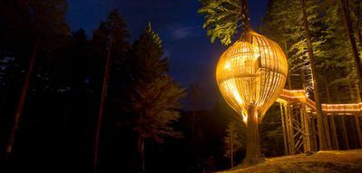 6. Redwoods Tree House