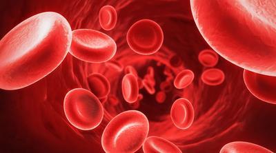 6 Makanan Ini Mampu Perlancar Sirkulasi Darah