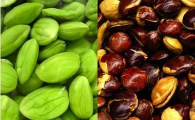 4. Hindari Makanan Berbau Menyengat dan Lengket di Gigi