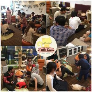 Cutie Cats Cafe, Kemang, Jakarta Selatan