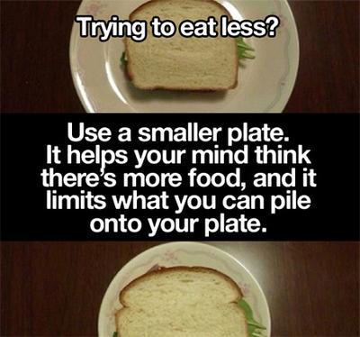 1. Gunakan Piring Dengan Ukuran yang Lebih Kecil