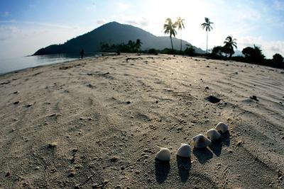 Wisata Pantai Pulau Anambas - Pantai Padang Melang