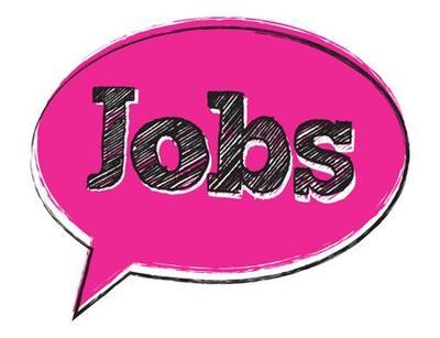 Job Vacancy: Web Specialist