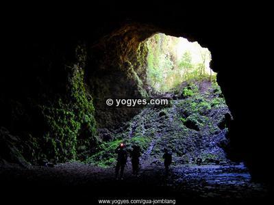 Menyaksikan Cahaya Surga dan Hutan Purba di Gua Jomblang