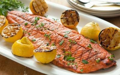 Makanan Berprotein
