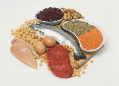 Hanya Mengonsumsi Protein