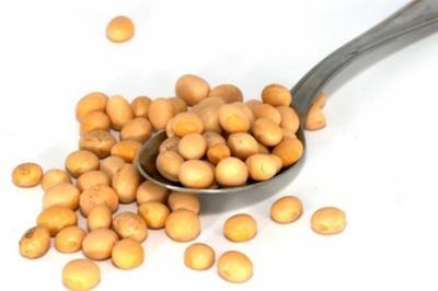 Cara Menghilangkan Komedo Dengan Kacang Kedelai