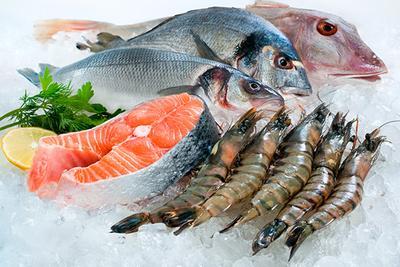 6) Variasi Ikan