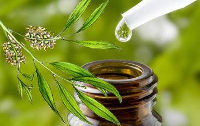Menggunakan Tree Tea Oil untuk Perawatan Kulit