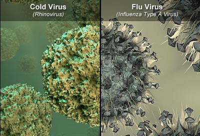 1. Flu & Demam Disebabkan Oleh Virus