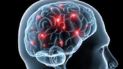 Cokelat Mampu Meningkatkan Kinerja Otak