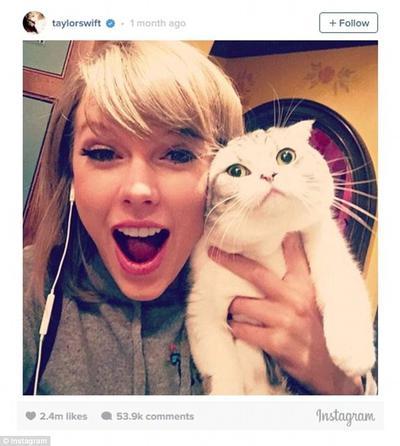 Berbagi Kebahagiaan Dengan Meredith