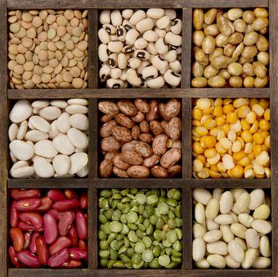 1. Kacang-kacangan
