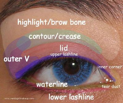 Mempelajari Istilah-Istilah Bagian Mata