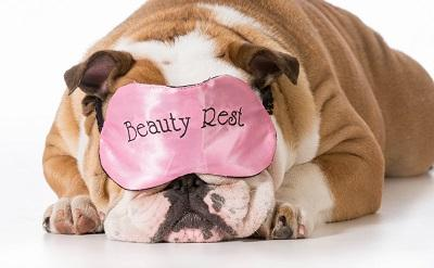 Alasan Pentingnya Beauty Sleep