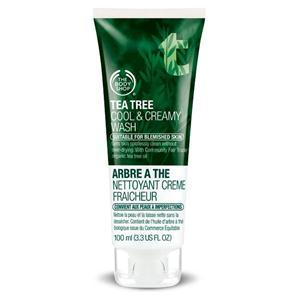 6. Tea Tree Cool & Creamy Wash