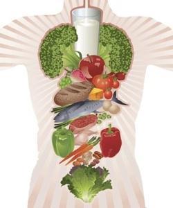Mengapa Makanan Sehat Diperlukan untuk Tubuh?