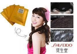 Shiseido Natorgo Mud Mask