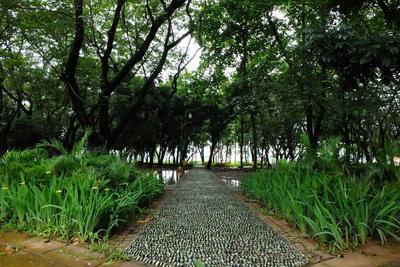 5. Taman Situ Lembang