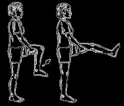 3. Latihan Menekuk Lutut