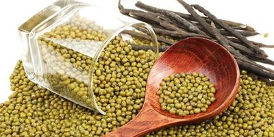 Konsumsi Makanan Bergizi dan Suplemen