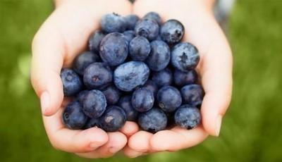 Kulit Kamu Kusam dan Kering? Yuk Konsumsi Blueberry!