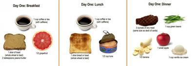 Diet Hari Pertama