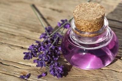 Parfum Aroma Bunga Lavender