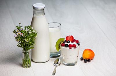 Susu dan Yogurt