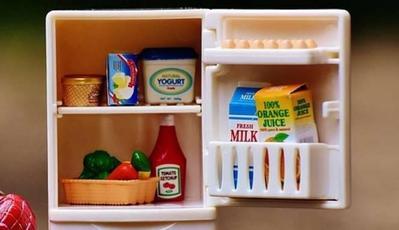 Bersihkan Kulkasmu Dari Makanan Berikut Agar Dietmu Sukses!