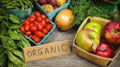 4. Menggunakan Bahan Organik