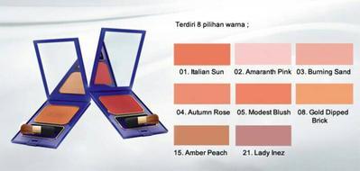 Inez Color Contour Plus Blusher with Brush