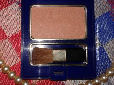 Review Inez Color Contour Plus Blusher with Brush