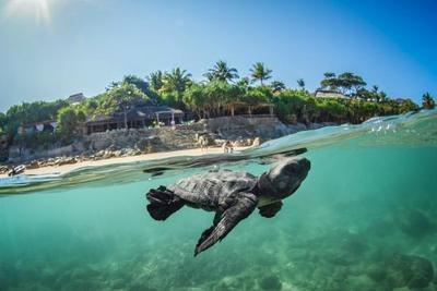 Ingin Berlibur ke Pantai? Intip Dulu List Pantai Paling Bagus di Indonesia Ini!