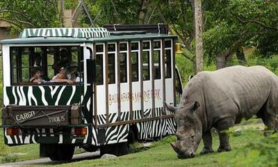 Sejarah Taman Safari Indonesia