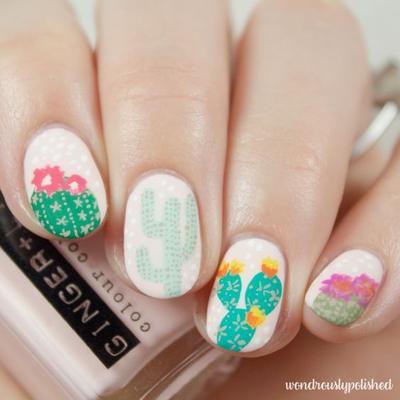 Flowery Cactus