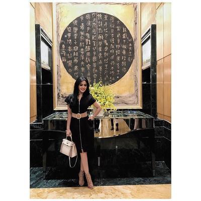 Hermès Birkin Himalayan 25 Bag