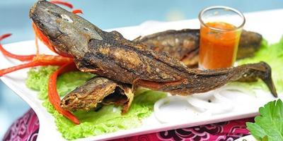 Butuh Rekomendasi Pecel Lele Paling Enak di Jakarta? Ini Listnya yang Bisa Kamu Kunjungi