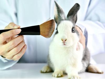 Mungkin Kamu Gak Sadar, Ternyata Ini Sisi Kelam Di balik Produk Kosmetik!