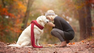 Katanya Orang Bershio Anjing Tanah Identik dengan Sifat Ini, Setuju Enggak?