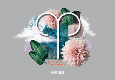 3. Aries